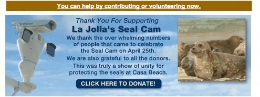 Screen shot of a banner ad soliciting donations for the Seal Cam on the WAN Conservancy website, wan conservancy.org The nonprofit initially asked the City of San Diego for $283,000 a year to monitor the streaming footage with paid camera monitors, according to a spokesperson for the mayor'