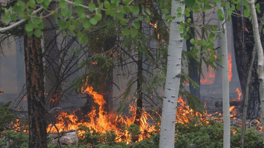 Wild Fire In Southern Utah Forces Evacuations