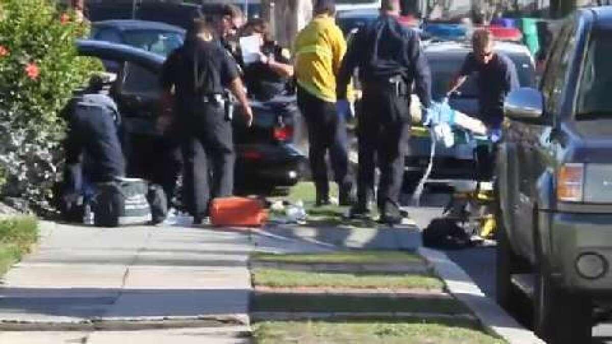 Murder suspect shot in Pt  Loma - The San Diego Union-Tribune