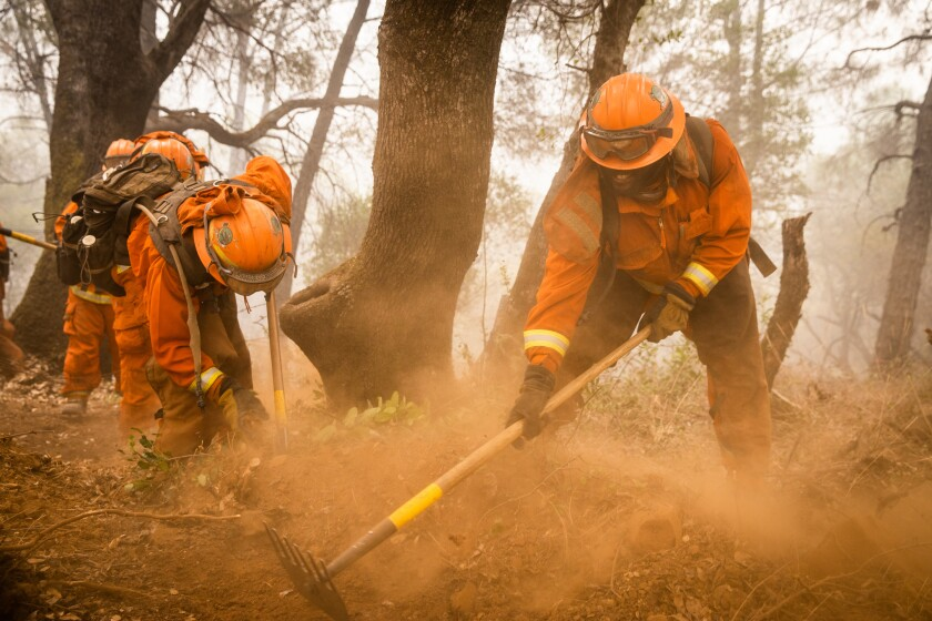 Inmate firefighters from the Miamonte Conservation Crew dug a fireline on the Bear Fire last September.