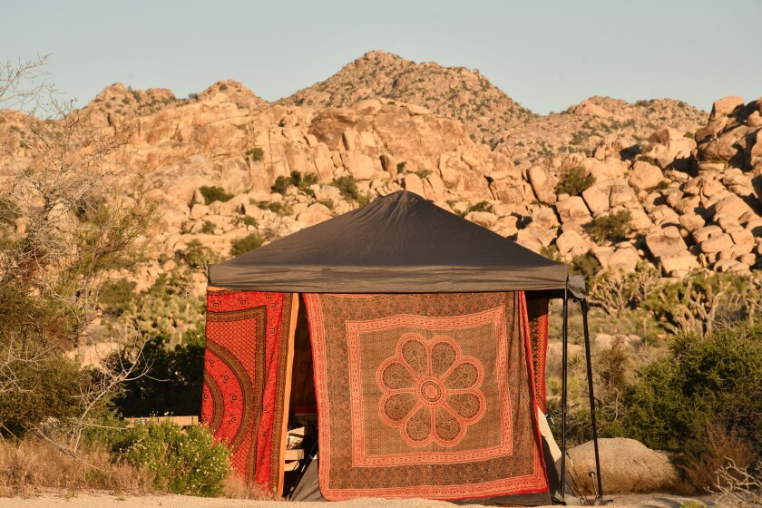 Joshua Tree Just Opened Before A Three Day Weekend Here S What To Expect Los Angeles Times