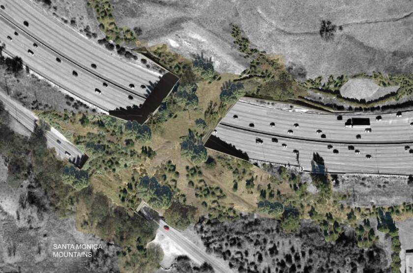 This rendering shows the proposed wildlife overpass above the 101 Freeway near Liberty Canyon Road in Agoura Hills.