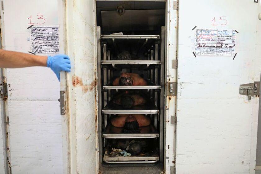Cadáveres apilados en una unidad de refrigeración en la morgue de Tijuana, el 11 de mayo de 2018 (Gary Coronado / Los Angeles Times).