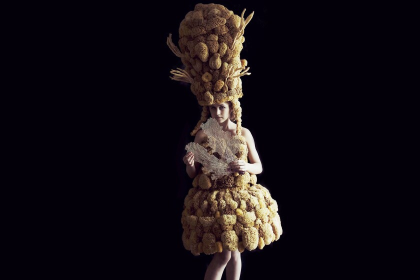 "Melissa Meier's ""Sea Sponge,"" from the Skins Series"