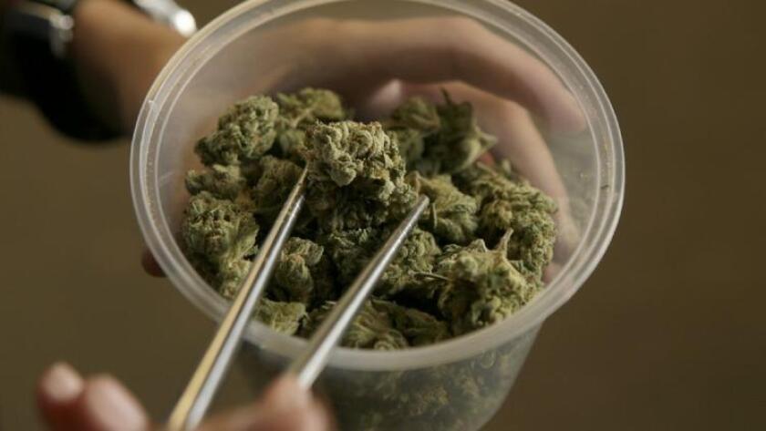 Más de 703,000 estudiantes de tiempo completo usan marihuana en un día normal, según un nuevo informe de la Administración de Servicios para la Salud Mental y el Abuso de Sustancias de los Estados Unidos (Irfan Khan/Los Angeles Times).