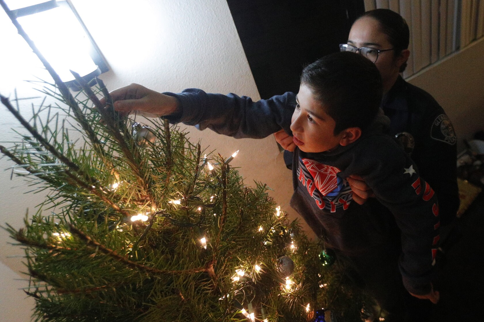 A green Christmas is in store this year for several Glendale families in need