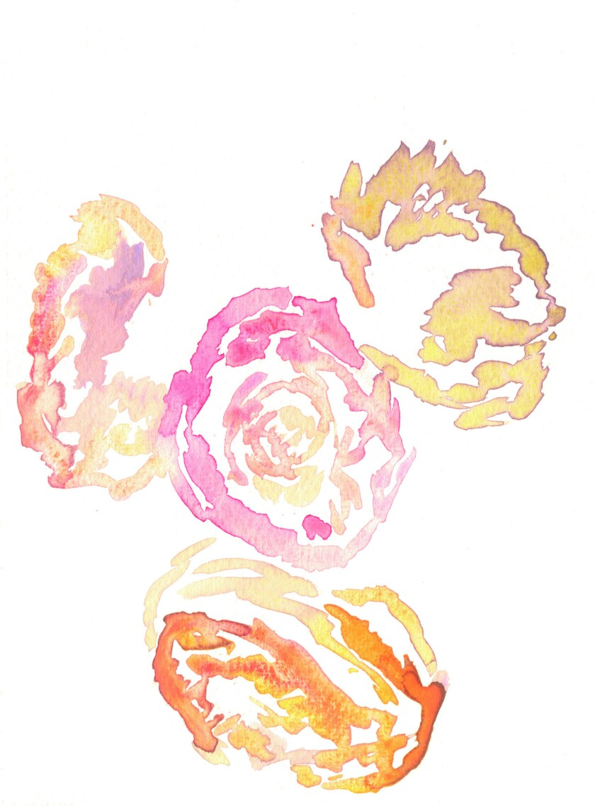 "An image from the story ""Chrysanthemum, Carnation, Anemone, Foxglove"" from the book ""Guestbook: Gho"
