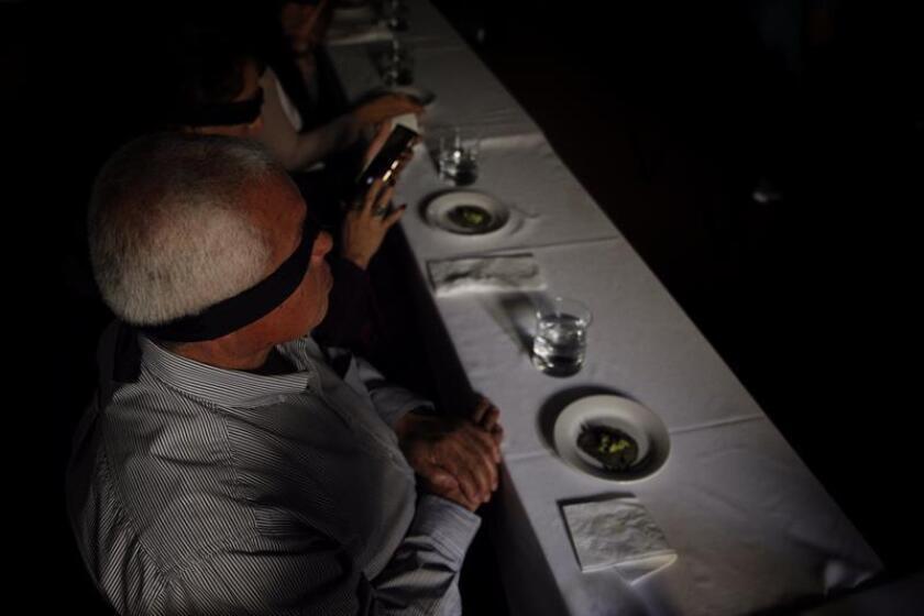 Fotografía que muestra comensales durante la cata de insectos realizada por el chef mexicano Irad Santacruz, en Ciudad de México (México). EFE