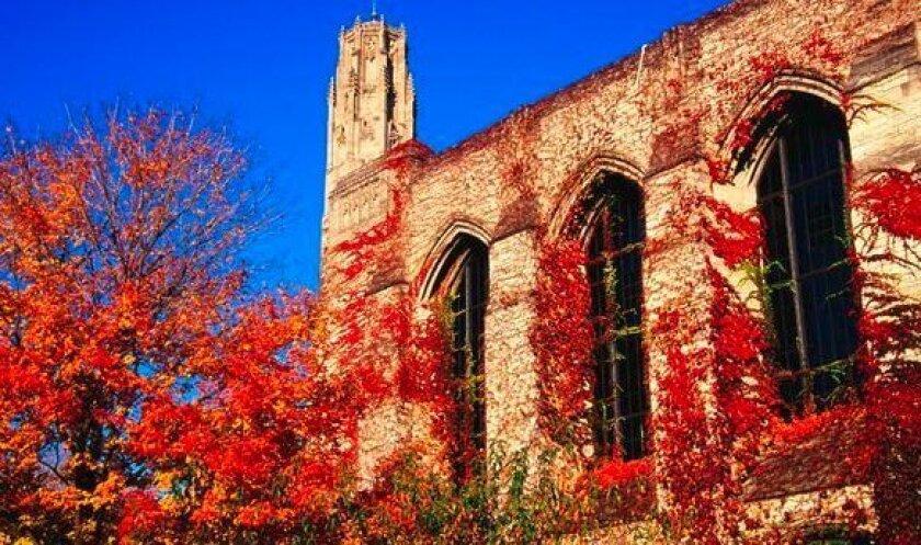 Northwestern University in autumn.