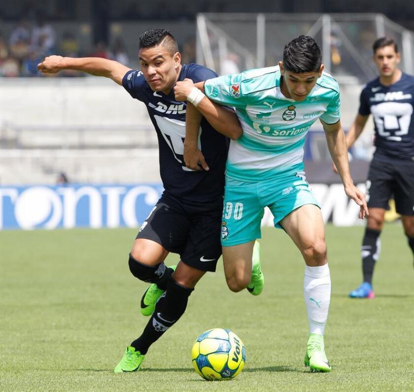 Los Pumas de la UNAM y el Santos Laguna empataron este domingo 1-1 en la decimoséptima jornada del torneo Apertura mexicano y se instalaron en el tercer y cuarto puesto de la clasificación con miras a la liguilla por el título que reúne a los mejores ocho equipos y comienza la próxima semana. EFE/Archivo