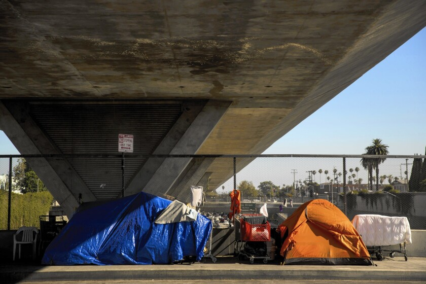 A homeless encampment under the 110 Freeway.