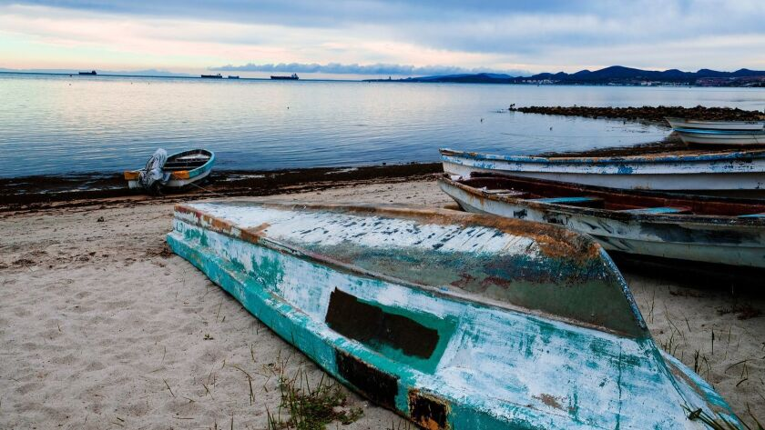 Fishing boats at rest in La Paz. Benjamin Myers photo