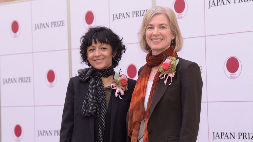 Emmanuelle Charpentier and Jennifer Doudna received the 2017 Japan Prize for their pioneering work on the CRISPR gene-editing system.