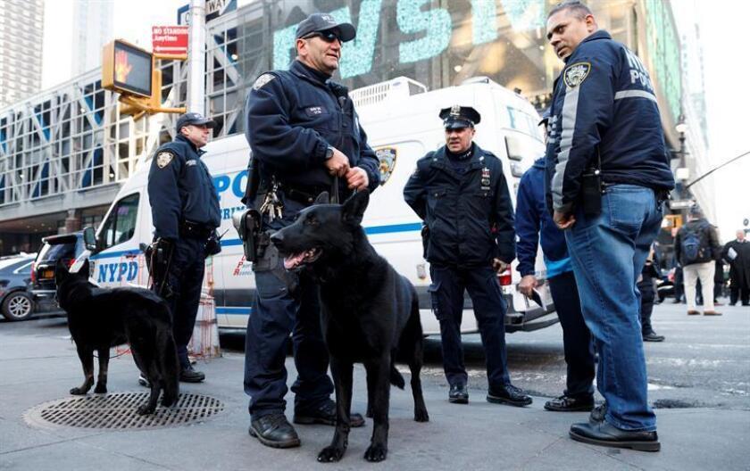 Dos hombres fueron detenidos hoy en Nueva York dentro de una investigación por terrorismo como sospechosos de intentar fabricar un artefacto explosivo, informaron medios locales. EFE/ARCHIVO