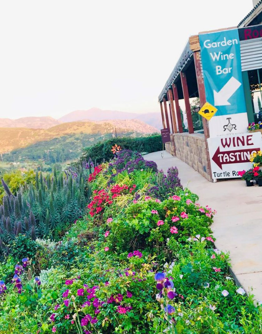 Turtle Rock Ridge Vineyard Winery will offer food catered by Marinade on Main restaurant starting June 13-14.