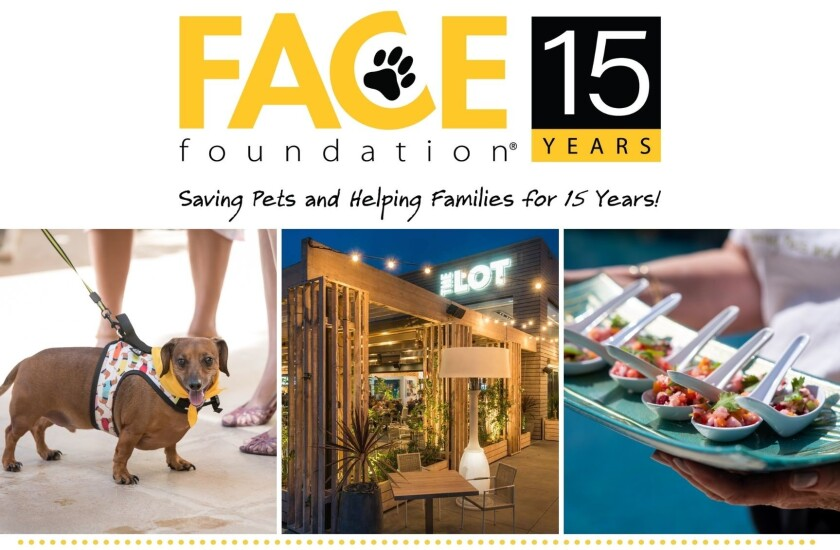 The FACE Foundation will celebrate 15 years with an event at The Lot La Jolla on Saturday, Sept. 11.
