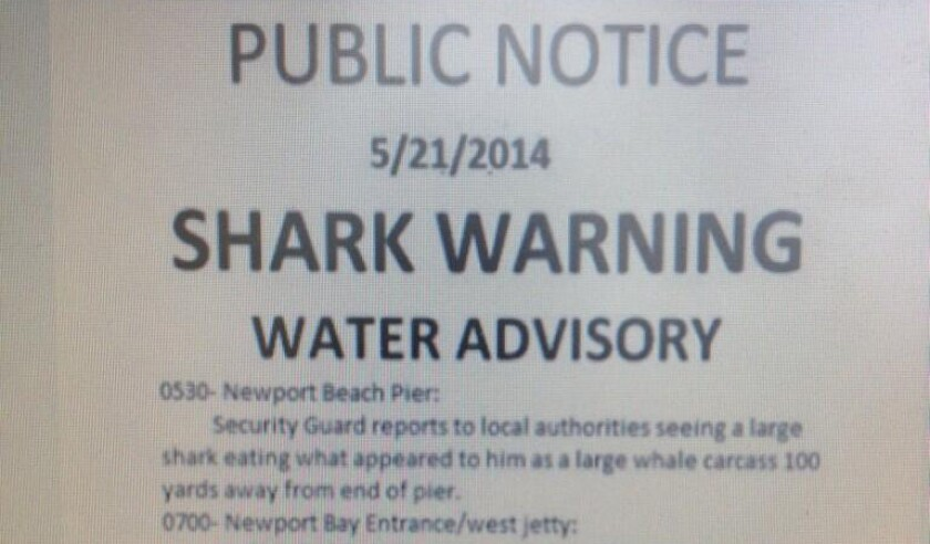 This fake Coast Guard notice warning of great white sharks in Newport Beach went viral Thursday.