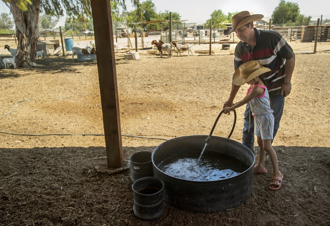 A little girl helps her father fill up a trough with water from a hose