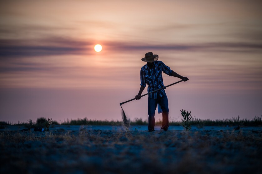 Nathaniel Kennedy works on his uncle Dennis Hutson's farm in Allensworth, Calif., in July.