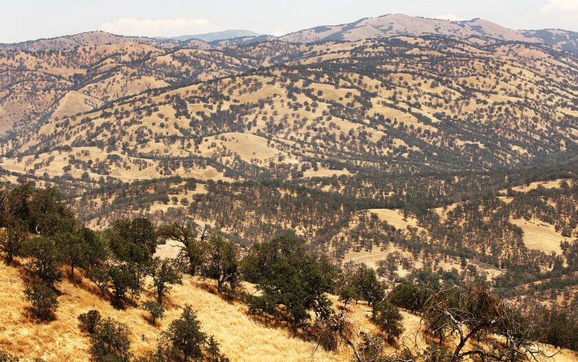 Outdoor enthusiasts get to roam Tejon Ranch —