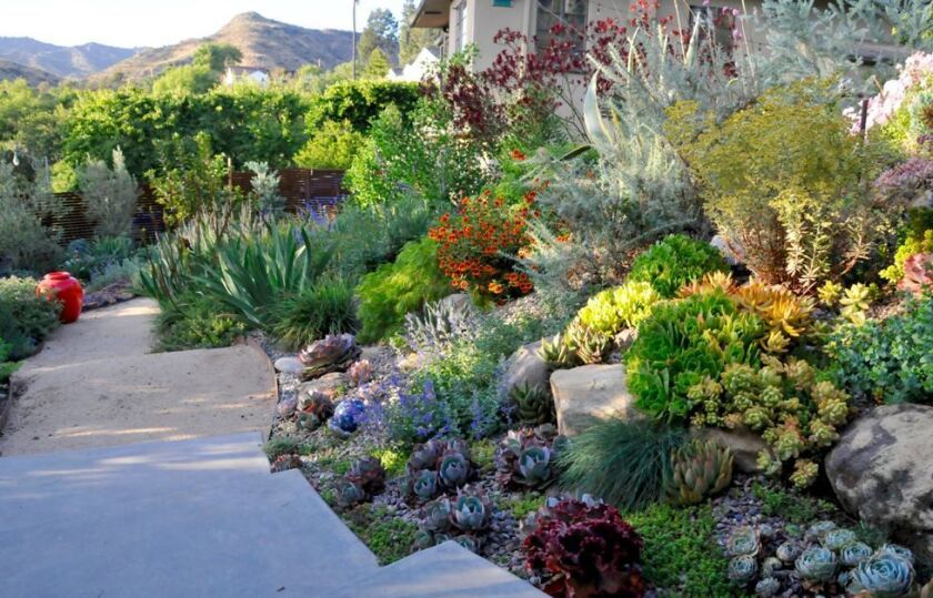 A garden by landscape designer Johanna Woollcott will be included on the Assn. of Professional Landscape Designers garden tour.