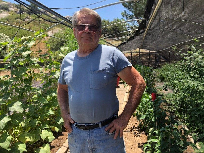 Walt Horelick stands in front of a shade house, now used to grow an abundance of vegetables and herbs.