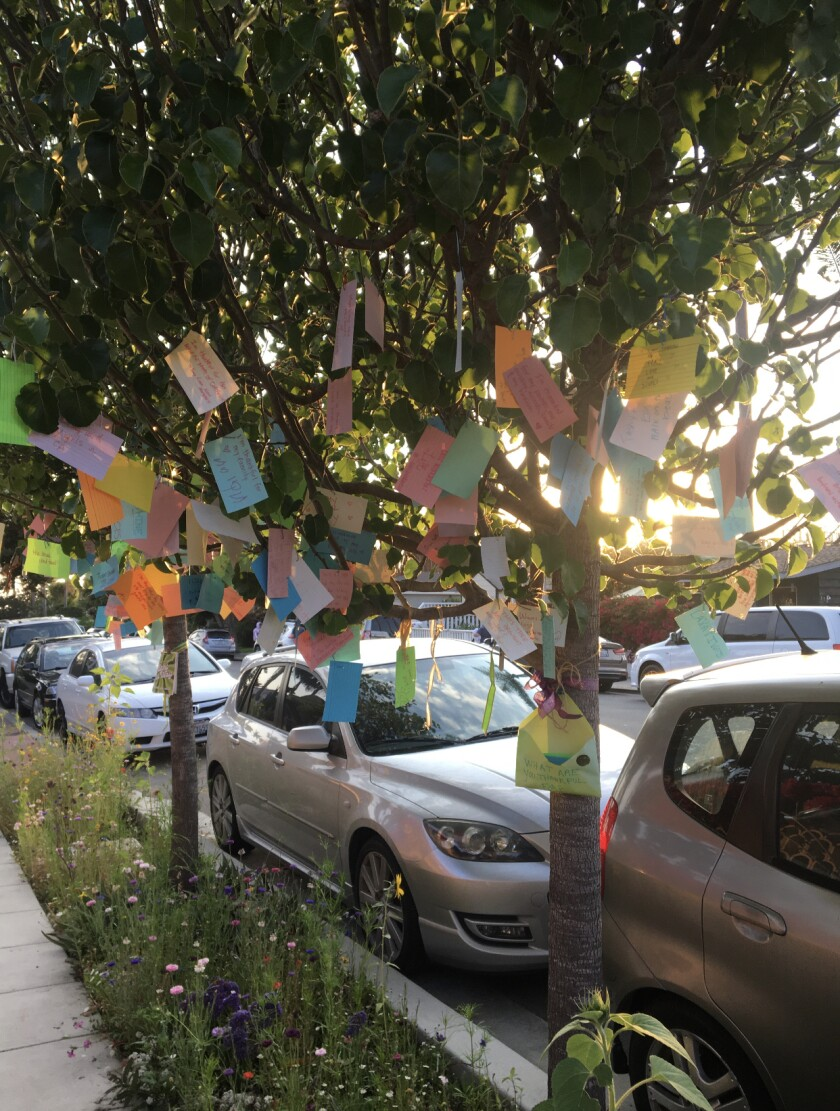 Over the past year and a half, Molly Bowman-Styles has hung cards on trees outside her La Jolla home, asking for messages.