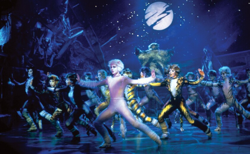 Cats_stage_2.jpg