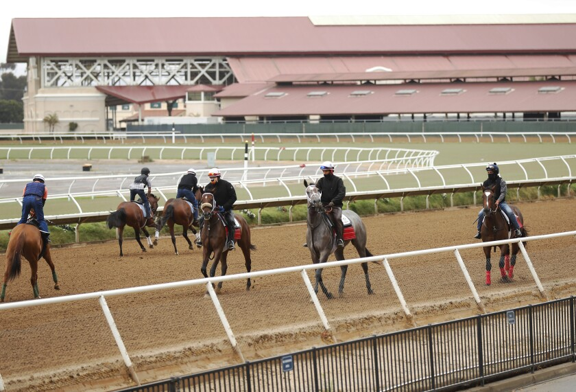 Horses on the track this summer at Del Mar.