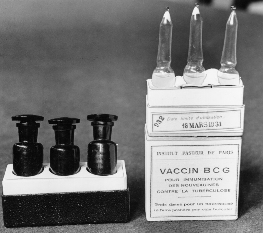 Old vaccine against tuberculosis