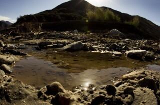 California water use drops, report says