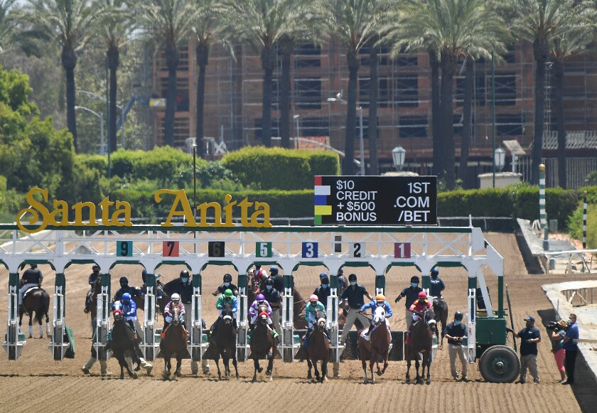 Horses break from the gate May 23, 2020, at Santa Anita.