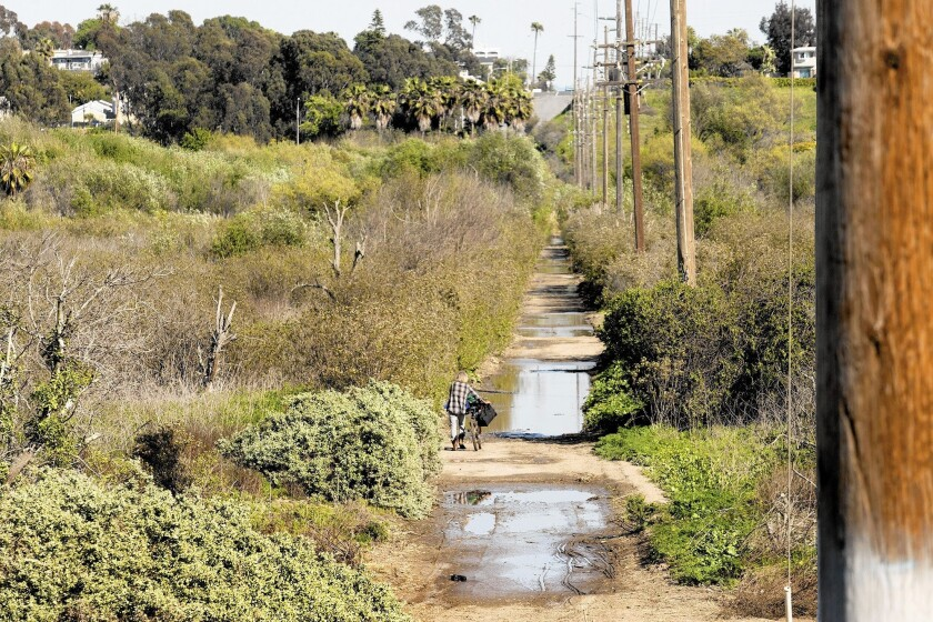 A man walks his bike in Talbert Regional Park, the site of a proposed sewer line.