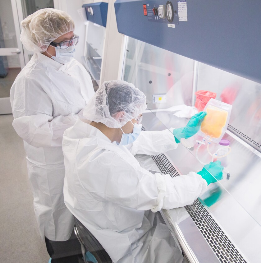A supervisor oversees the work of a technician in the laboratory at Personalized Stem Cells Inc.