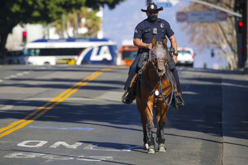 During the inauguration of Joe Biden as the 46th president, LAPD conducted mounted horse patrols in downtown Los Angeles.