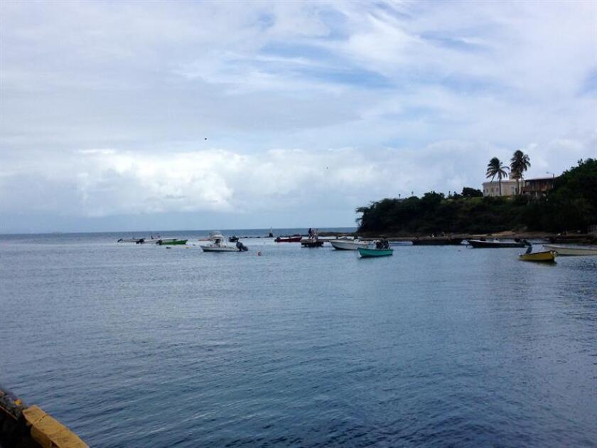 Vista de una parte de la isla caribeña de Vieques. EFE/Archivo