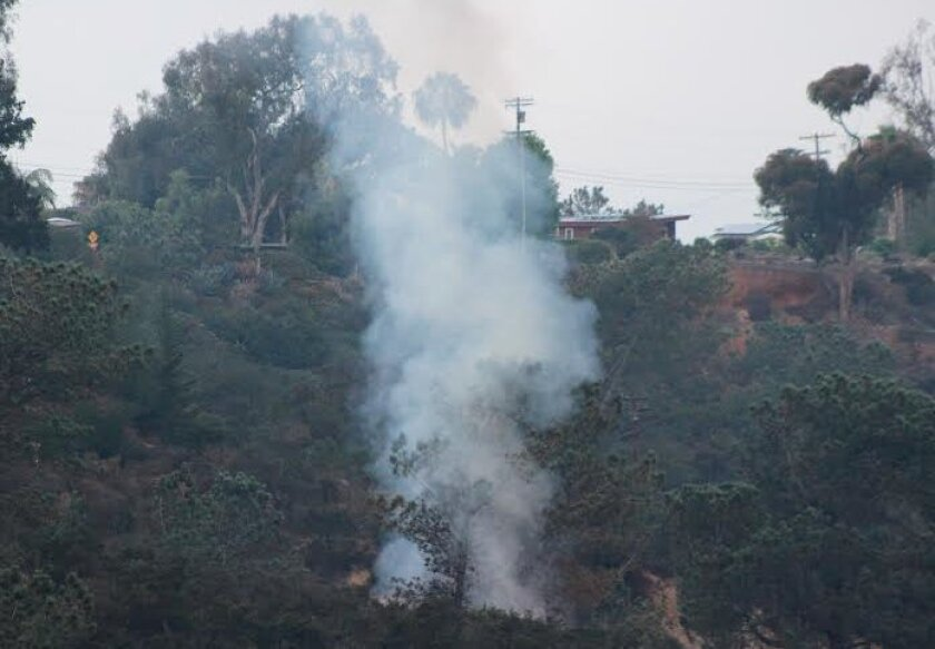 Lightning caused a brush fire Saturday morning in Crest Canyon, Del Mar.