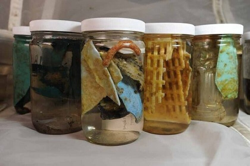 Jars of debris preserved for analysis by the Scripps Environmental Accumulation of Plastic Expedition.