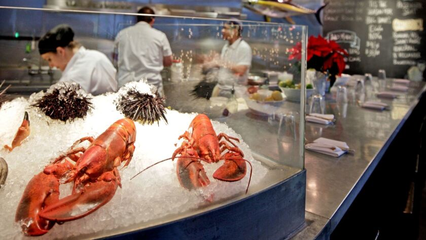 Lobsters and sea urchins on display at the Hungry Cat restaurant in Hollywood.