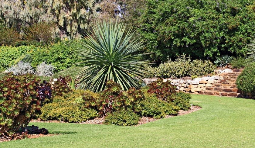 In Zone 3, drought-tolerant plants can create a barrier to slow a wildfire.