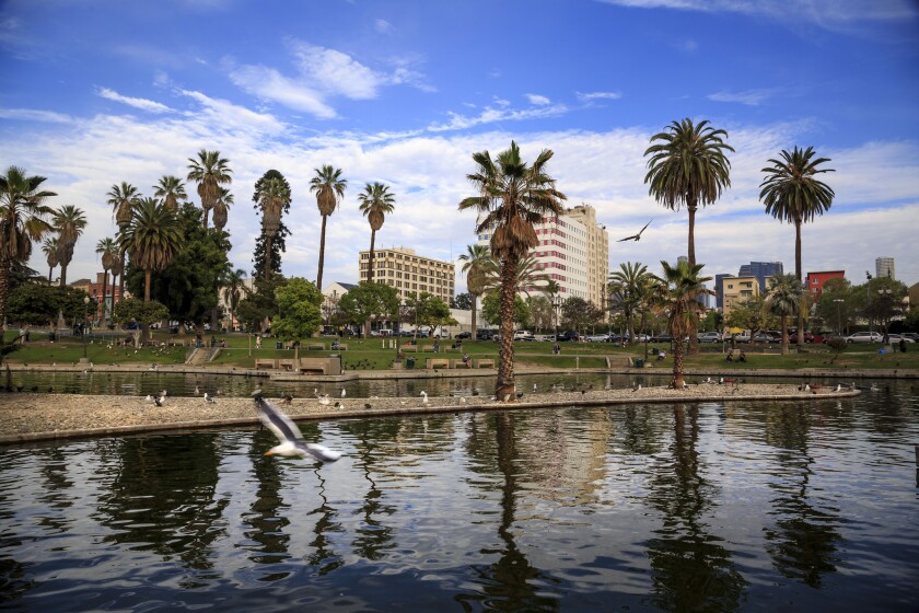A view of the lake in MacArthur Park with downtown Los Angeles.
