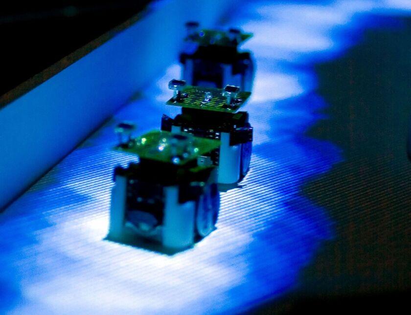 Do robot ants dream of electric crumbs?