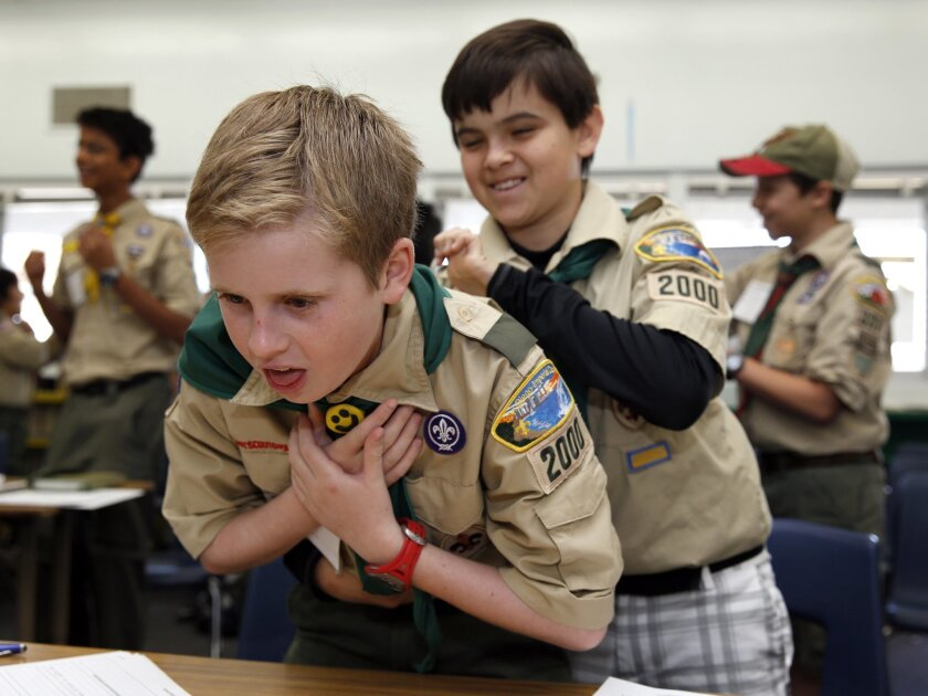 Scouts find merit in day of classes - The San Diego Union