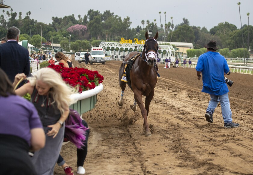 Leucothea sends photographers running as it gallops away from the starting line without jockey Norberto Arroyo Jr. at Santa Anita on Friday.
