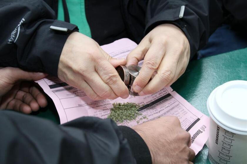 La pequeña localidad canadiense de Smiths Falls se ha convertido en la capital mundial de la marihuana de la mano de Canopy Growth, el mayor productor de cannabis del mundo y con ambiciosos planes de expansión en todo el mundo. EFE/ARCHIVO