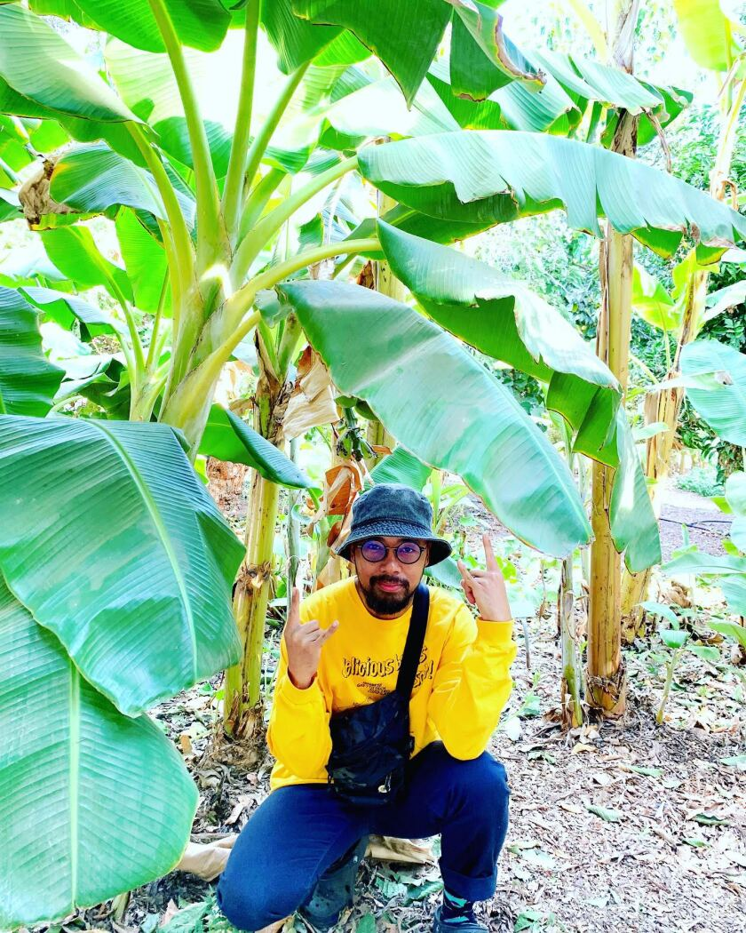 A man kneels under large tropical plant leaves.
