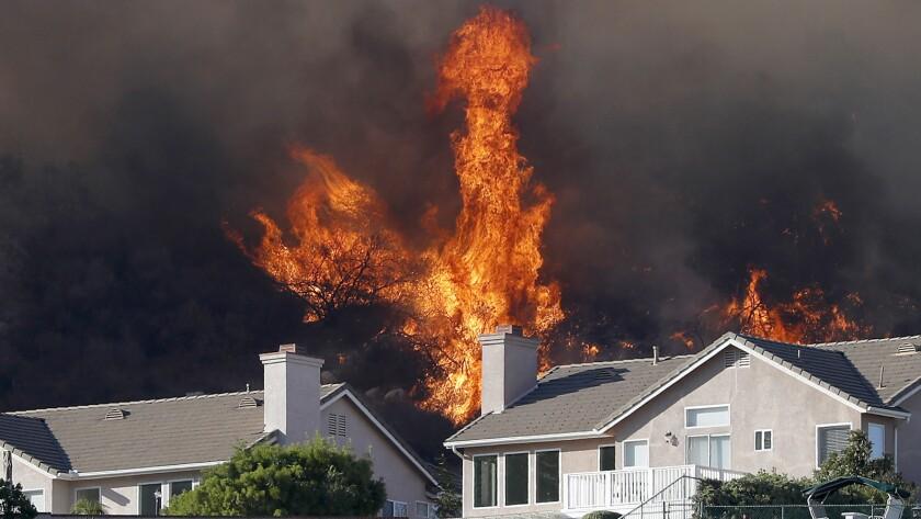 Brush burns behind homes