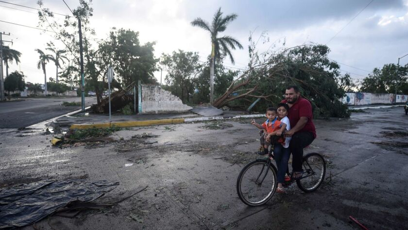 A man rides a bike carrying his children past a fallen tree after Hurricane Willa blew through Escuinapa, Mexico, on Wednesday.