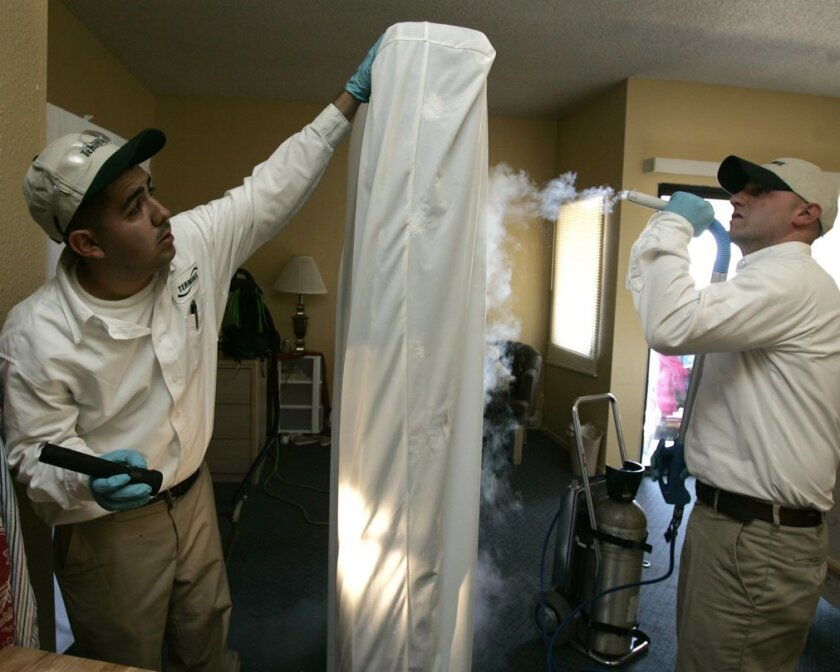 Ricky Munoz, a technician with Terminix, holds a mattress for service manager Kyle Mullin as he sprays frozen carbon dioxide to kill any bed bugs that may be present.