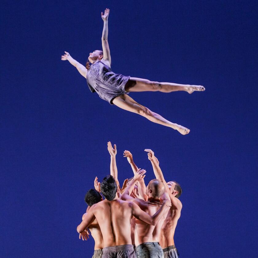 """Malashock Dance's """"Lifeblood Harmony"""""""